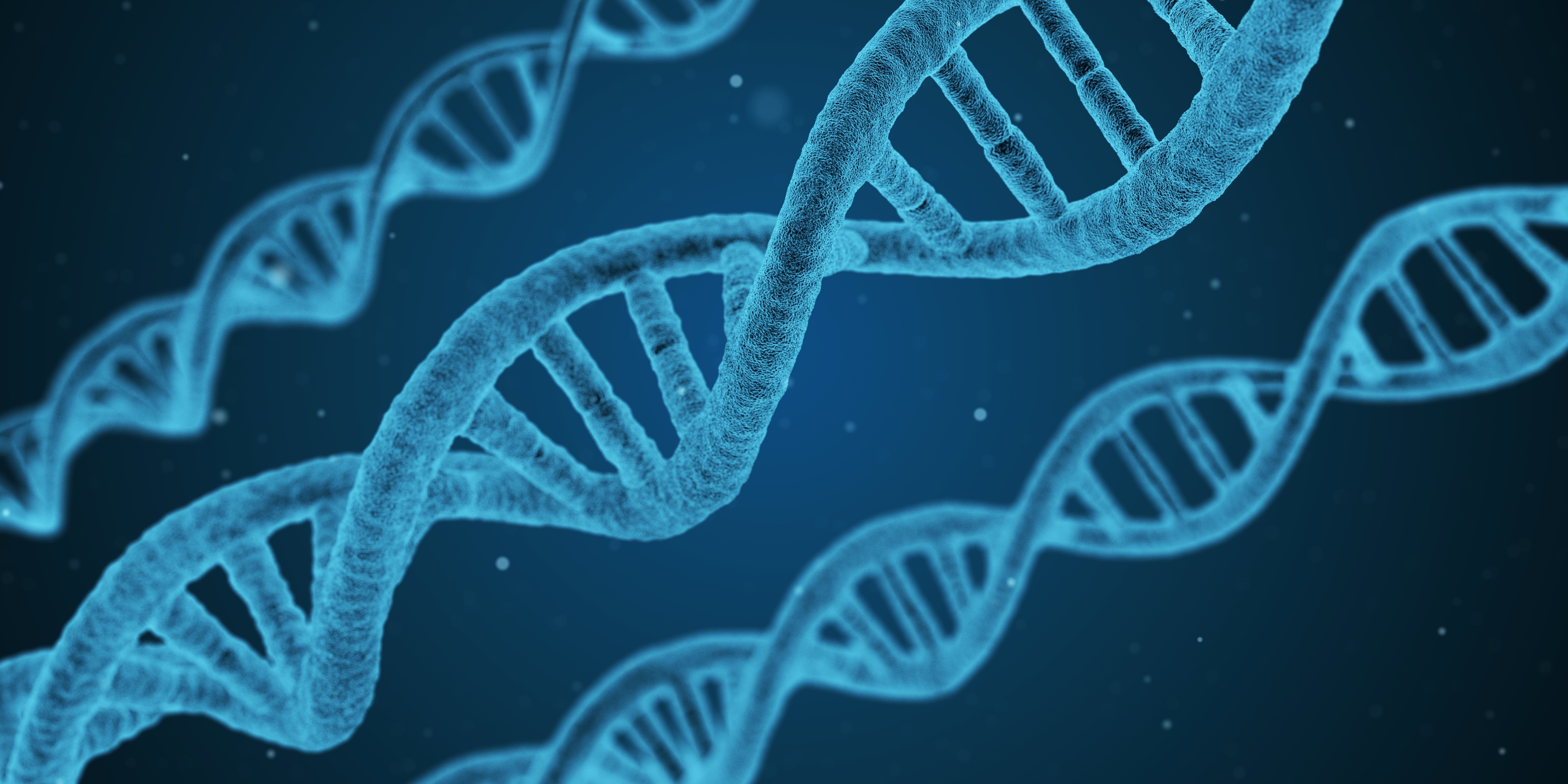 Podsticaj za očuvanje genetičkih resursa