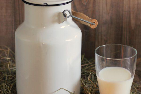 Premije za mleko