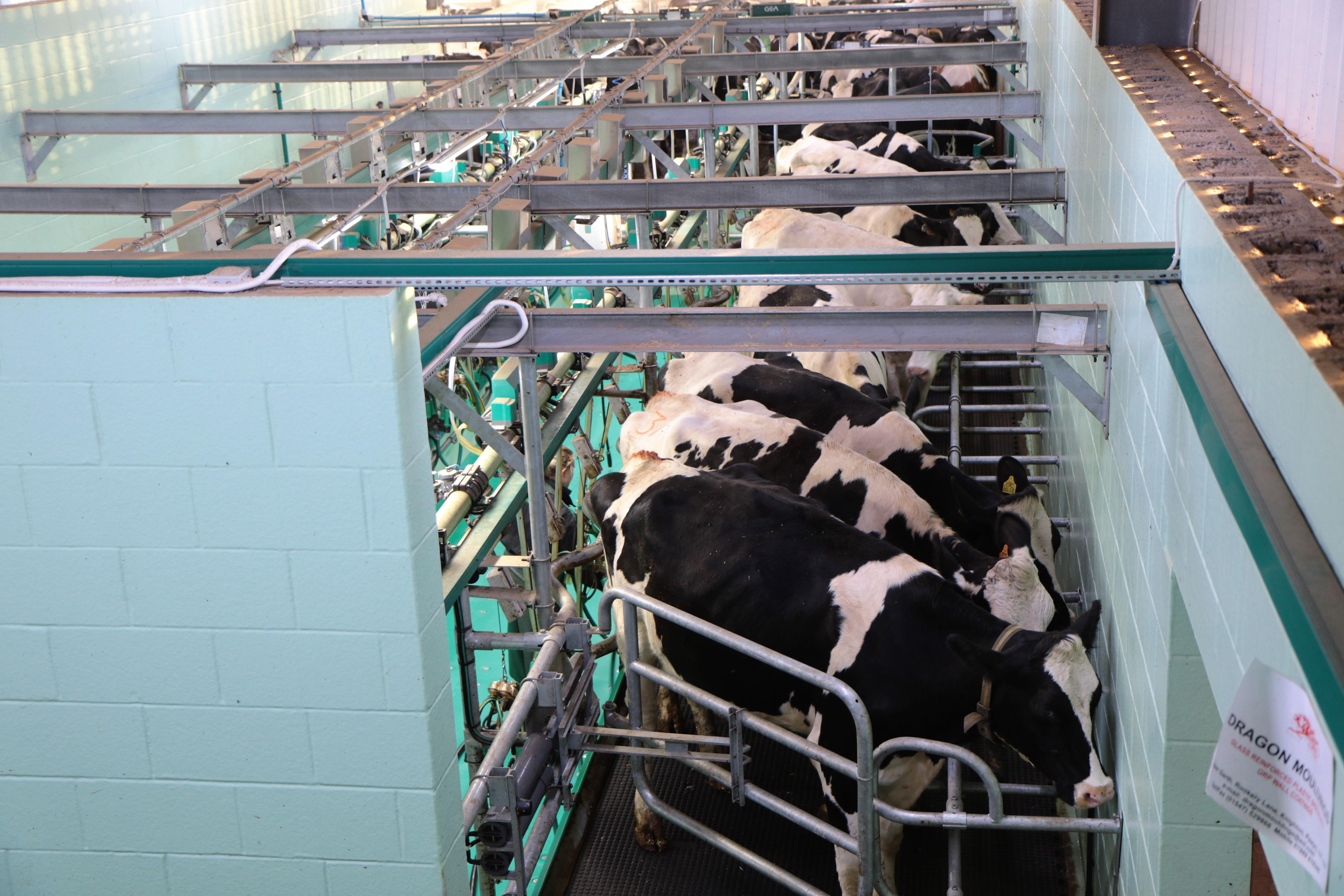 IPARD M1 poljoprivredna proizvodnja