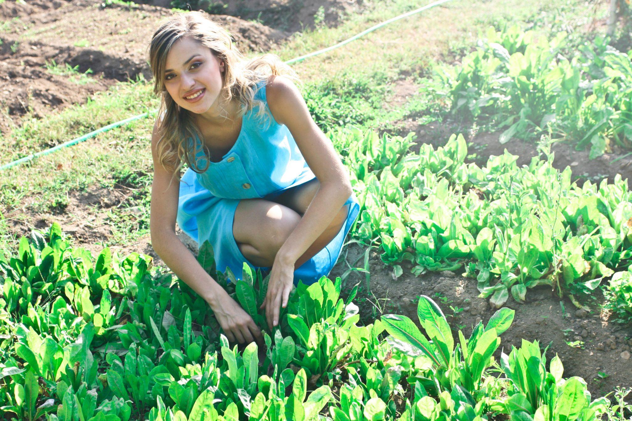 APV: Bespovratna sredstva za mlade poljoprivrednike u 2021. godini