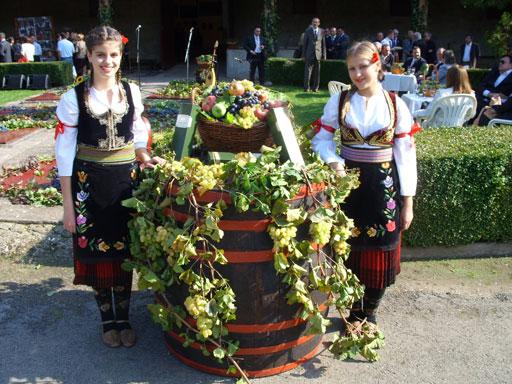 APV: Bespovratna sredstva za održavanje tradicionalnih manifestacija u 2020. godini