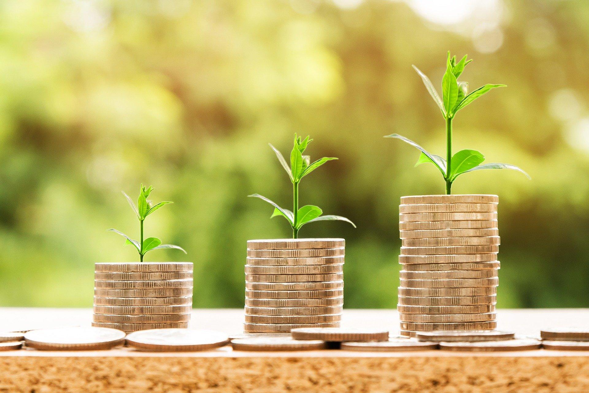 2,6 milijardi dinara finansijske podrške poljoprivrednim gazdinstvima