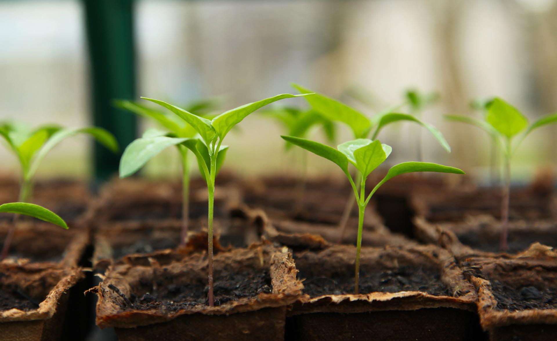 APV: Do 100% bespovratnih sredstava poljoprivrednim školama za  opremu i mehanizaciju