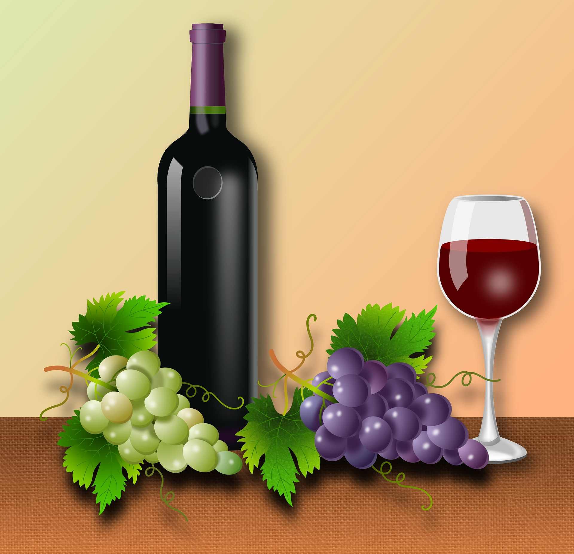 APV: Konkurs za bespovratna sredstava za proizvodnju vina i rakije u 2021. godini